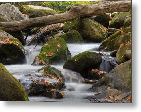 Stream Metal Print featuring the photograph Stream Of Thought by Charles Warren