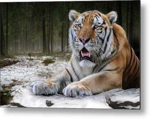 Tj Metal Print featuring the digital art TJ by Big Cat Rescue