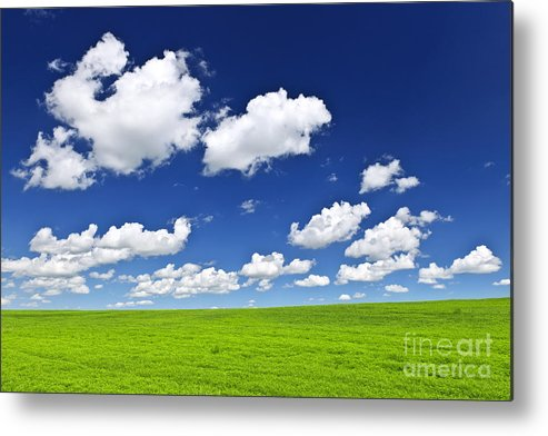 Field Metal Print featuring the photograph Green Rolling Hills Under Blue Sky by Elena Elisseeva