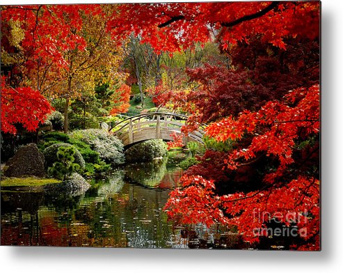 Landscape Metal Print featuring the photograph A Most Beautiful Spot by Jon Holiday