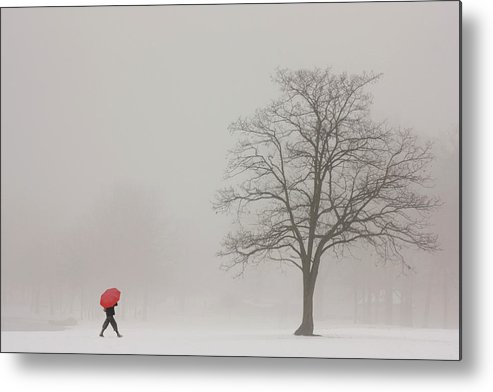 Snowy Winter Metal Print featuring the photograph A Shortcut Through The Snow by Tom York Images