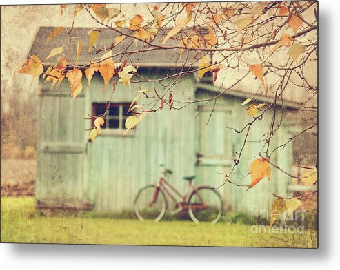Agriculture Metal Print featuring the photograph Closeup Of Leaves With Old Barn In Background by Sandra Cunningham