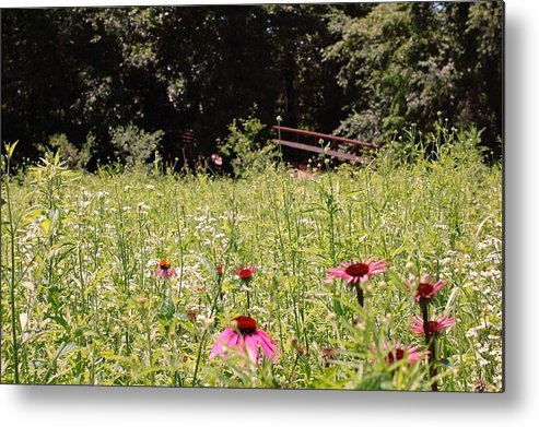 Flower Metal Print featuring the photograph Floral Bridge by Jame Hayes