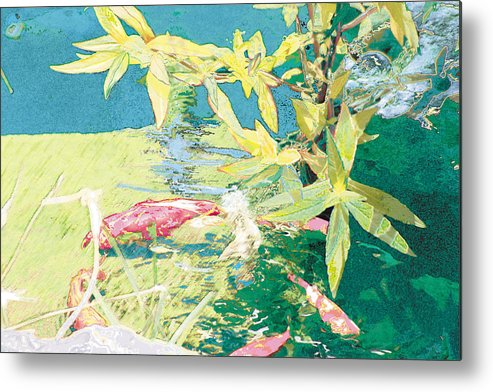 Koi Metal Print featuring the photograph Marry-go-round Kio In The Spring-may Day by Judy Loper