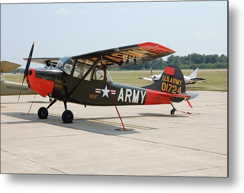 Dog Metal Print featuring the photograph O-1 Bird Dog by Jame Hayes