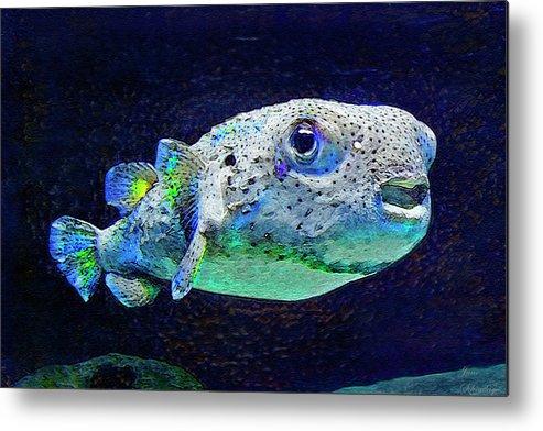 Puffer Fish Metal Print featuring the digital art Puffer Fish by Jane Schnetlage