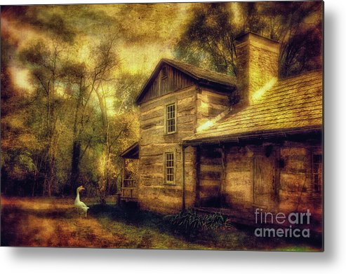 House Metal Print featuring the photograph The Guardian by Lois Bryan