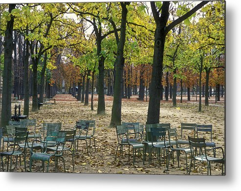 Outdoors Metal Print featuring the photograph Trees And Empty Chairs In Autumn by Stephen Sharnoff