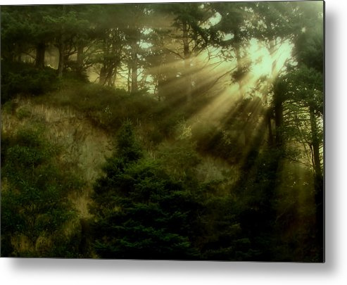 Sunrise Metal Print featuring the photograph Early Morning by Katie Wing Vigil