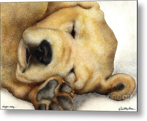 Will Bullas Metal Print featuring the painting Nipper Nap... by Will Bullas