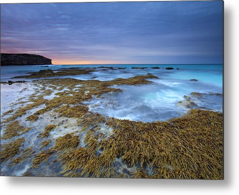 Pennington Bay Metal Print featuring the photograph Sunrise Beneath The Storm by Mike Dawson