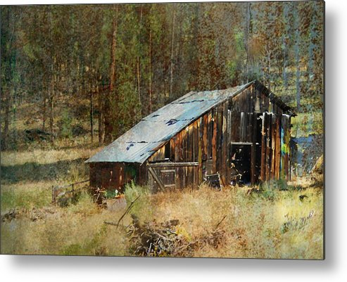 Barn Metal Print featuring the photograph Yesteryear Shed 2 by Dale Stillman