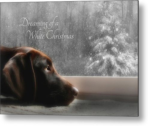 Sienna Metal Print featuring the photograph White Christmas by Lori Deiter