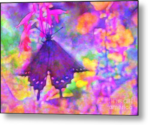 Swallowtail Metal Print featuring the photograph Swallowtail by Judi Bagwell