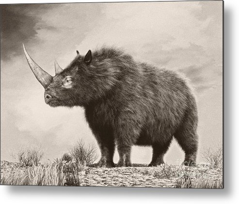 Horizontal Metal Print featuring the digital art The Woolly Rhinoceros Is An Extinct by Philip Brownlow