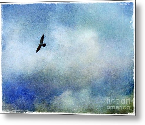 Mississippi Metal Print featuring the photograph Far Above by Judi Bagwell