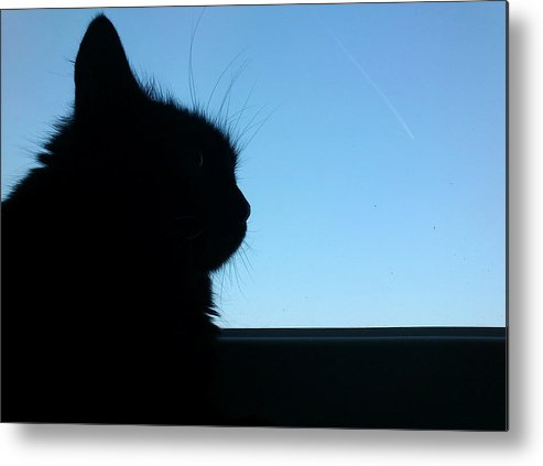 Cat Metal Print featuring the photograph Silhouette by Lucy D