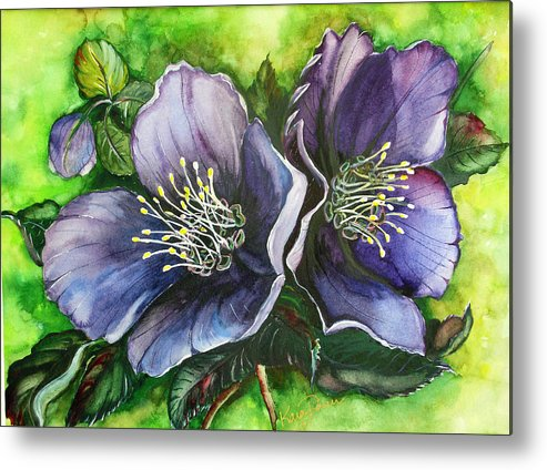 Flower Painting Botanical Painting Original W/c Painting Helleborous Painting Metal Print featuring the painting Helleborous Blue Lady by Karin Dawn Kelshall- Best