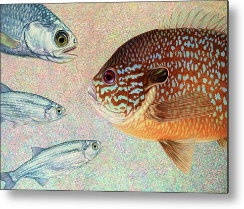 Fish Metal Print featuring the painting Mooneyes, Sunfish by James W Johnson