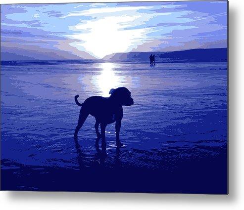 Staffordshire Bull Terrier Metal Print featuring the digital art Staffordshire Bull Terrier On Beach by Michael Tompsett