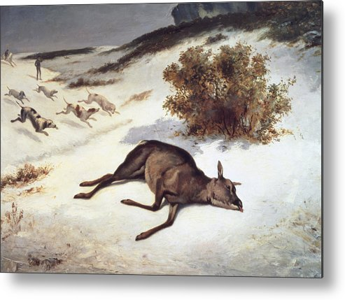 Hind Forced Down In The Snow Metal Print featuring the painting Hind Forced Down In The Snow by Gustave Courbet