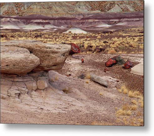 Jim Metal Print featuring the photograph Purple Earth by James Peterson