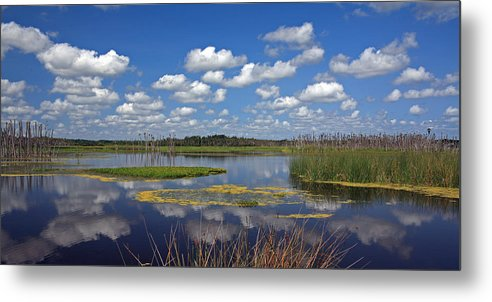 Orlando Metal Print featuring the photograph Orlando Wetlands Park Cloudscape 4 by Mike Reid