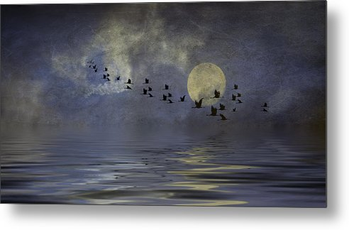 Heavens Gate Metal Print featuring the photograph Heavens Gate by Diane Schuster