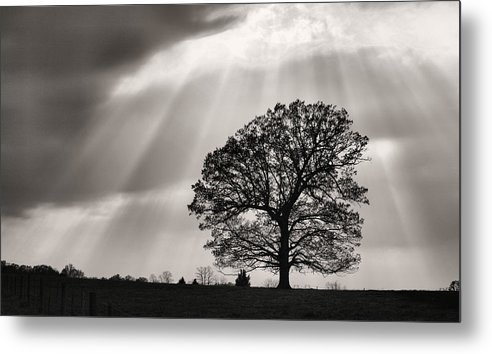 Shining Down Metal Print featuring the photograph Shining Down by JC Findley