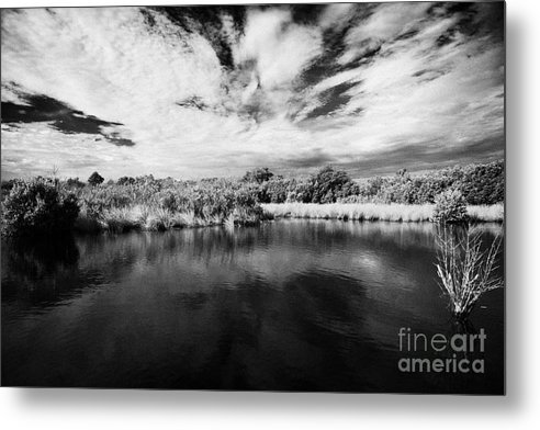 Florida Metal Print featuring the photograph Flooded Grasslands And Mangrove Forest In The Florida Everglades Usa by Joe Fox