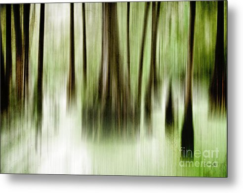 Abstract Metal Print featuring the photograph Swamp by Scott Pellegrin