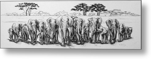 Elephants Metal Print featuring the drawing Following The Matriarch by Ann Beeching