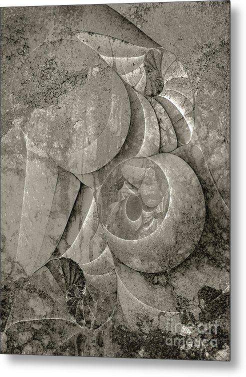 Fossilized Shell Metal Print featuring the digital art Fossilized Shell - B And W by Klara Acel
