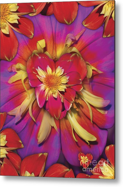 Abstract Metal Print featuring the digital art Loveflower Orangered by Alixandra Mullins