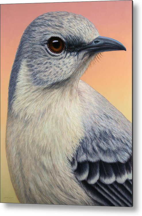 Mockingbird Metal Print featuring the painting Portrait Of A Mockingbird by James W Johnson