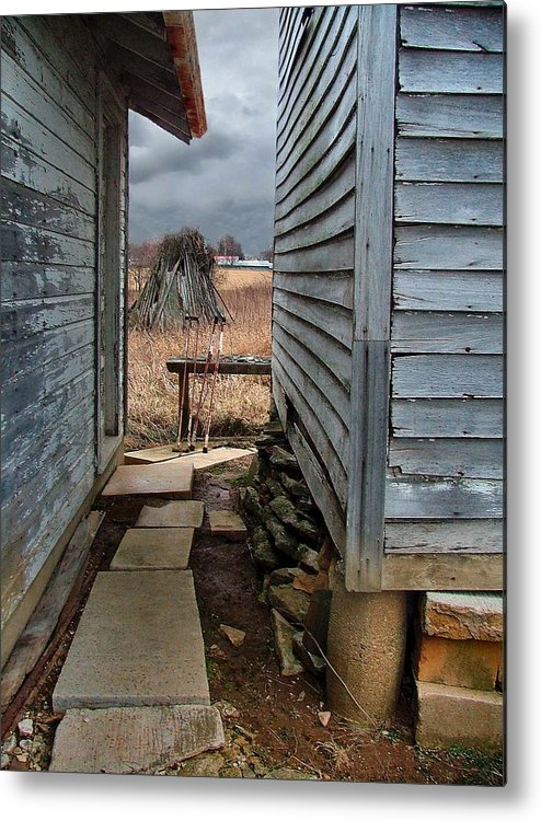 Dog Trots Metal Print featuring the photograph The Dog Trot by Julie Dant