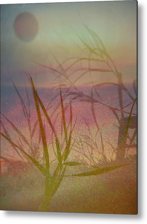Scenery Metal Print featuring the photograph Windswept by Shirley Sirois