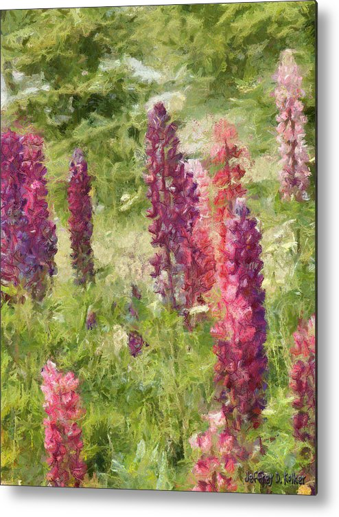 Nova Scotia Metal Print featuring the painting Nova Scotia Lupine Flowers by Jeff Kolker