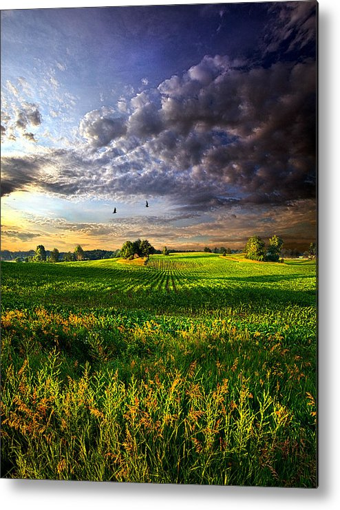 Horizons Metal Print featuring the photograph All I Need by Phil Koch