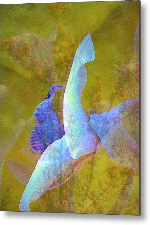 Abstract Metal Print featuring the photograph Spread To The Wind by Shirley Sirois