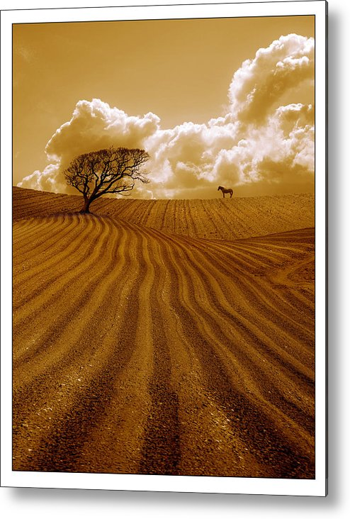 Field Metal Print featuring the photograph The Ploughed Field by Mal Bray
