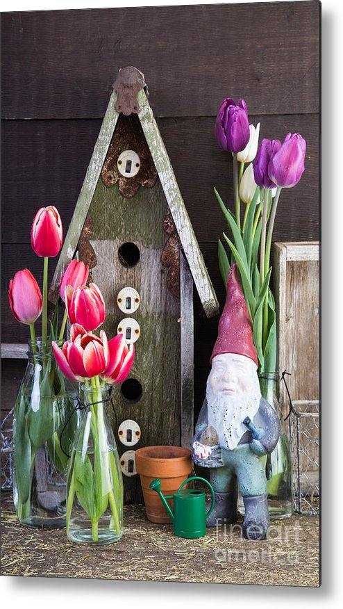 Barn Metal Print featuring the photograph Inside The Garden Shed by Edward Fielding