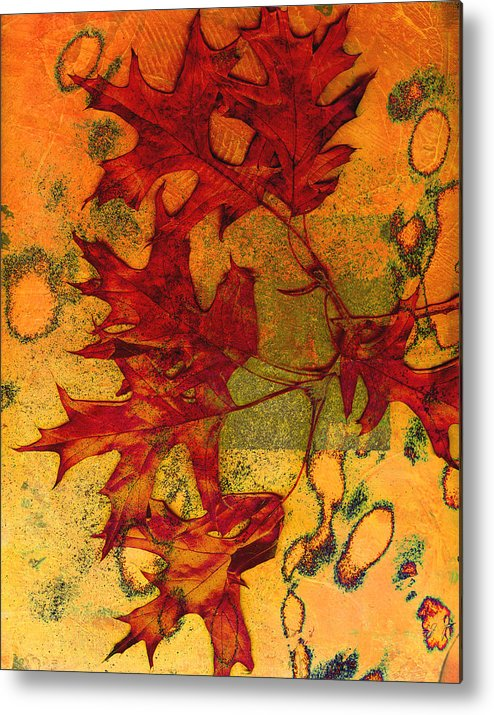 Autumn Leaves Metal Print featuring the photograph Autumn Leaves by Ann Powell