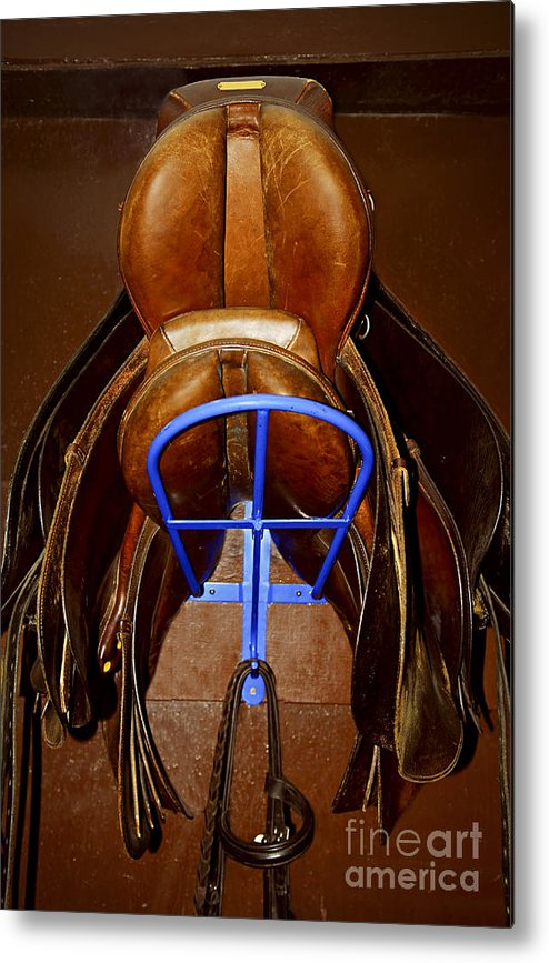 Saddle Metal Print featuring the photograph Saddles by Elena Elisseeva
