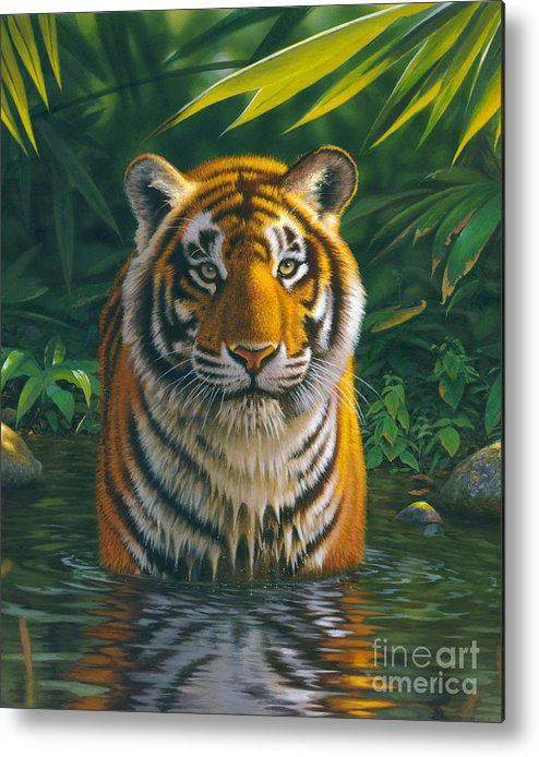 Animal Metal Print featuring the photograph Tiger Pool by MGL Studio - Chris Hiett