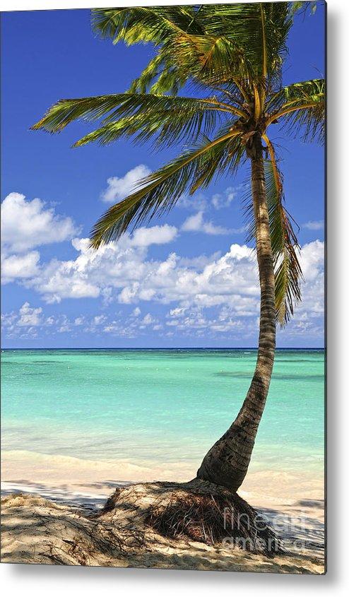 Beach Metal Print featuring the photograph Beach Of A Tropical Island by Elena Elisseeva
