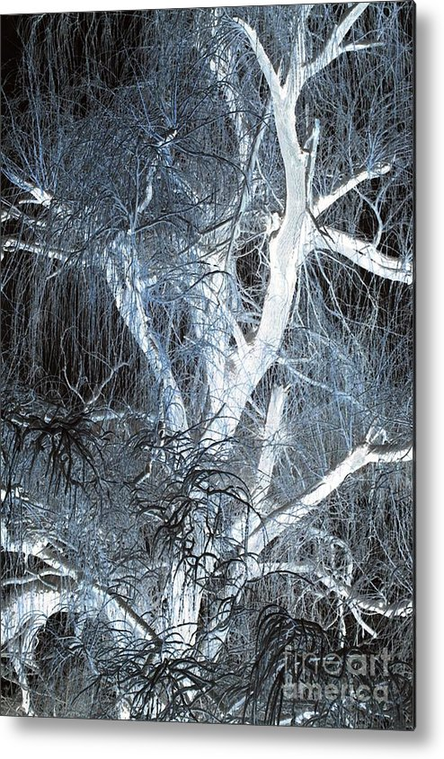 Snow Metal Print featuring the photograph Blue Snow by Kathleen Struckle