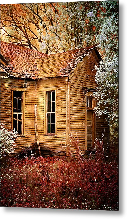 Old School House Metal Print featuring the photograph Little Old School House II by Julie Dant