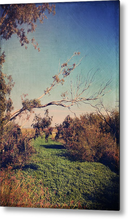 Big Break Regional Shoreline Park Metal Print featuring the photograph Love Lives On by Laurie Search