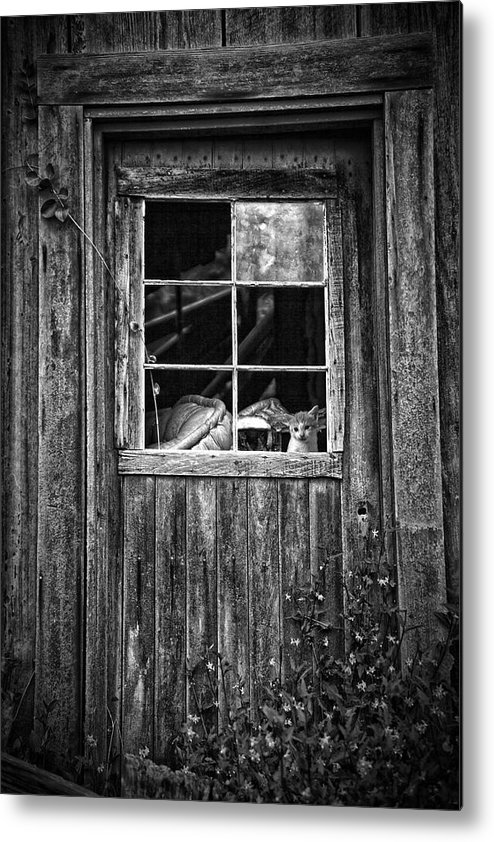 White Metal Print featuring the photograph Old Window by Garry Gay
